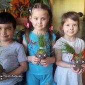 """Экологический проект """"Друзья Чиполлино"""""""
