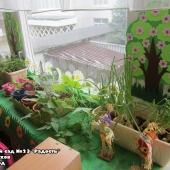 Огородик на окошке 2021